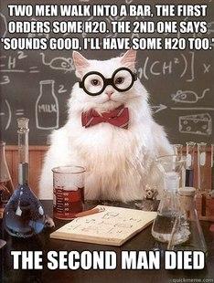 Chemistry Cat h2o2
