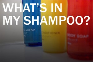 What's in My Shampoo?